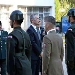 Left to rot? The pungent fruit of NATO in Libya